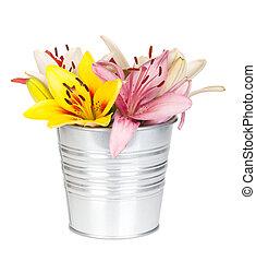 fleurs, lis, coloré