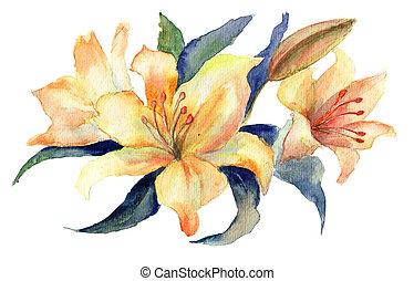 fleurs, lis, jaune