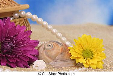 fleurs, mer écale