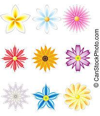 fleurs, mettez stylique, icône