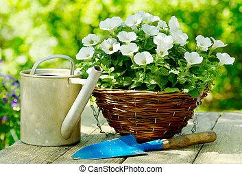 fleurs, outils, jardin