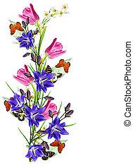fleurs, papillons, isolé, tulipes, perce-neige, arrière-plan., printemps, blanc