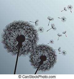 fleurs, pissenlits, fond, deux, gris