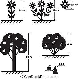 fleurs, plan, arbres, taille