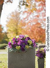 fleurs pourpres, pierre tombale, automne