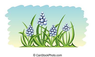 fleurs ressort, fond, nature