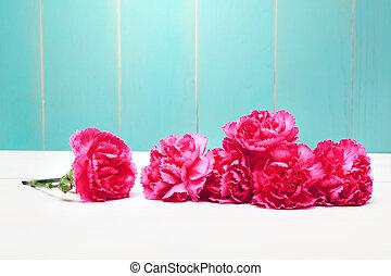 fleurs roses, oeillet