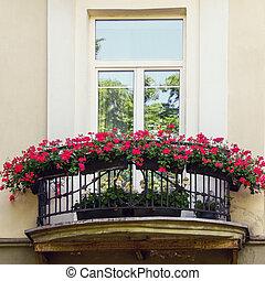 fleurs, rouges, balcon