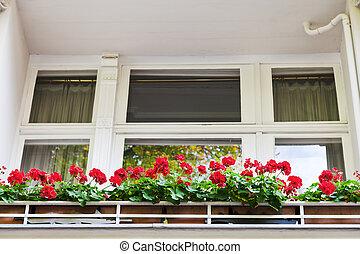 fleurs rouges, sur, balcon, de, bâtiment, dans, berlin