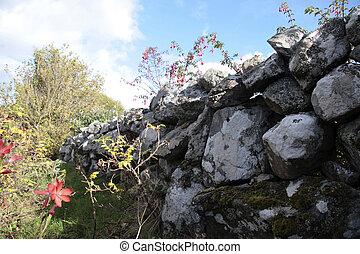 fleurs sauvages, 4