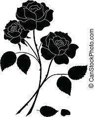 fleurs, silhouette, rose