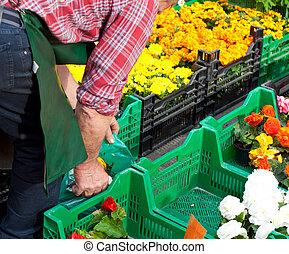 fleurs, stalle marché