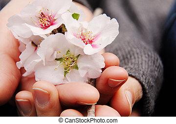 fleurs, tenue femme, rose