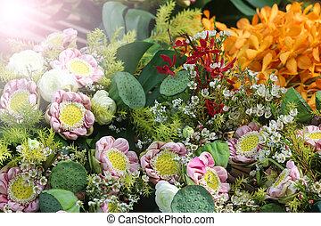 fleurs tropicales, divers, espèce, coloré