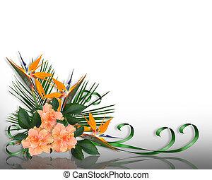 fleurs tropicales, frontière, élégant