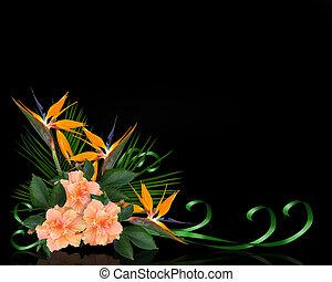 fleurs tropicales, frontière, sur, noir