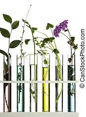 fleurs usines, dans, eprouvettes