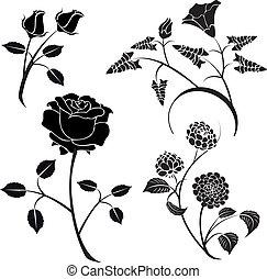 fleurs, vecteur, 18