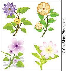 fleurs, vecteur, ensemble