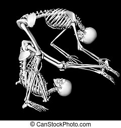 flexible - skeletons in a sexual pose intended as a prank...