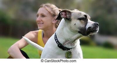 flicka, hund, dens