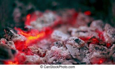 Flicker of smoldering coals lay in cinder, closeup view