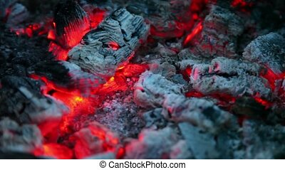 Flicker of smoldering embers lay in ashes, closeup view