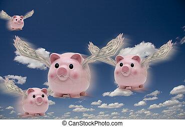 fliegen, schweine