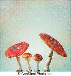 fliegen, weinlese, hintergrund, agaric