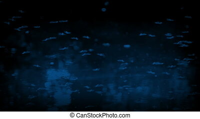 Flies Buzzing Over Water Surface At Night