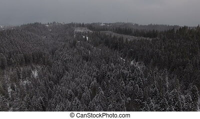 Flight above winter forest on the north, aerial top view