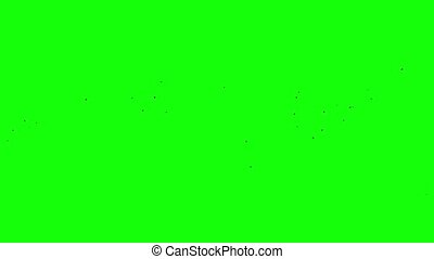 Flight of a black raven crow on a green background Chromakey...