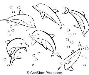 cheerful sea dolphins