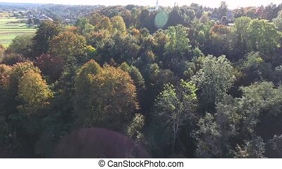 flight over autumn park - flight over beautiful colored...