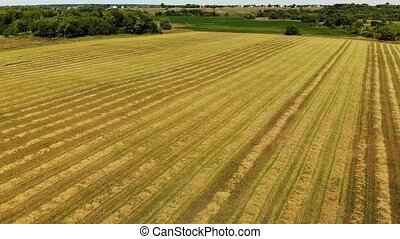 Flight over field with cut straw