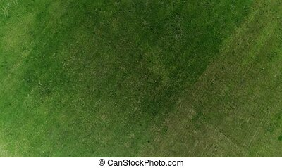 Flight over green and black agricultural fields in Russia -...
