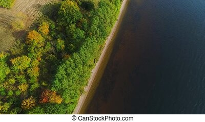 flight over lake and forest at autumn - aerial view over...