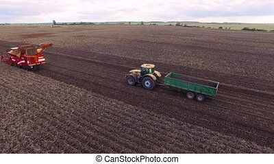 Flight over Potato fieldBeautiful Aerial view of Tractor works on the field