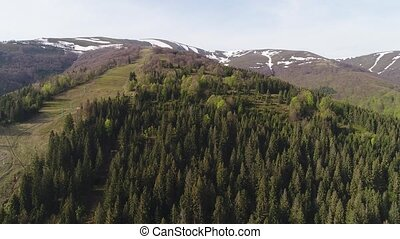 Flight over the forest in the mountains. Aerial view of...