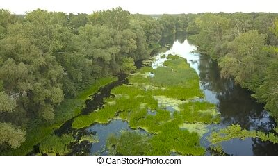 Flight over the river overgrown with grass, Ukraine...
