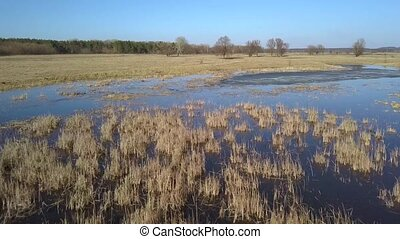 Flight over the swampy terrain in the spring - Aerial view...