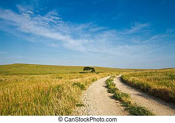Flint Hills Gravel Road - A gravel road going through the...