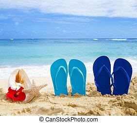 Flip flops, seashell and starfish with tropical flowers on sandy beach in Hawaii, Kauai