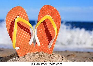 flip-flops.