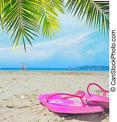 flip flops under a palm branch