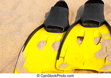 Flippers in the sand on the beach