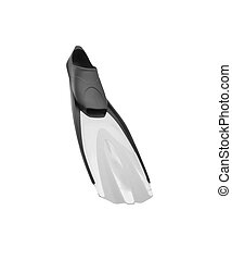 Flippers isolated on the white background