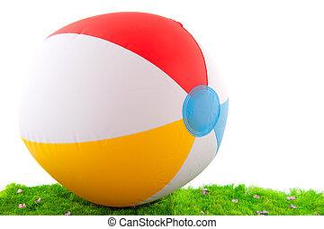 beach ball in the grass