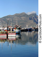 Boats floating in a harbour