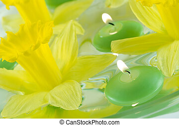 Floating Candles - Floating candles and daffodils